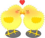 целовать цыпленоков Стоковое Изображение RF