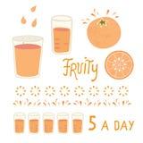 Целый и кусок цитрусовых фруктов вектора сочные оранжевые со стеклом иллюстрация штока
