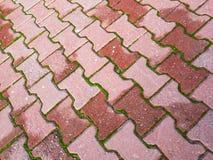 Цементированные камни и дизайн Стоковое Фото