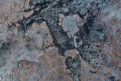 цементируйте текстуру Стоковые Фото
