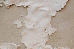 Цемент стены Стоковые Изображения RF