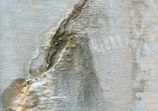 цемент треснул выдержанную стену минералов рамки полную Стоковое фото RF