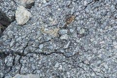цемент Стоковое Изображение