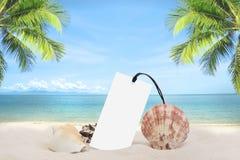 Цена бирки песчаного пляжа лета пустое с раковиной и кокосовой пальмой стоковое изображение rf