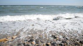 Цена моря с волнами видеоматериал