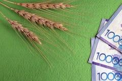 Цена пшеницы в Казахстане 3 колоска хлеба и 30 тысяч тенге на зеленой предпосылке скопируйте космос стоковые фото