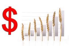 цена роста зерна стоковое изображение