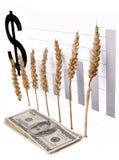 цена роста зерна стоковые изображения rf