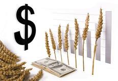 цена роста зерна стоковая фотография