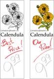 ценники 2 calendula Стоковые Изображения