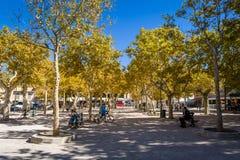 Центральная площадь St Tropez старого городка стоковое изображение rf