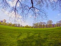 центральный новый парк york Стоковые Фотографии RF