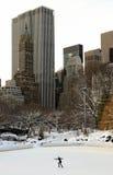центральный новый снежок york парка Стоковое Изображение