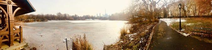 Центральный парк страны чудес зимы стоковая фотография rf