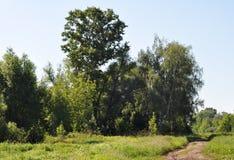 центральный русский ландшафта Стоковые Изображения