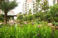 центральный сад Стоковая Фотография RF