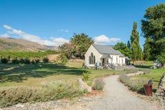 Центральный виноградник Otago Стоковое Фото
