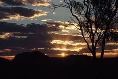 Центральный заход солнца австралийца пустыни Стоковые Изображения RF