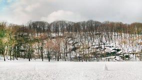 центральный новый парк york Стоковые Изображения