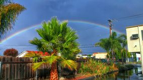 Центральный дождь побережья Стоковое Фото