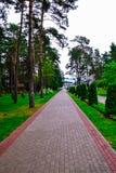 Центральный переулок Стоковые Фото