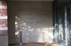 Центр для африканских обезьян, зоопарк Regenstein Lincoln Park стоковое изображение