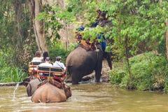 Центр консервации слона Таиланда - ванна слона ванны слона деятельности естественно стоковые изображения