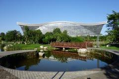 Центр нового столетия глобальный, Чэнду, Сычуань, Китай против голубых небес Стоковое Изображение RF