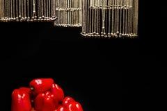 Цепи с колоколами в форме шариков выделены и висят над овощами на черной предпосылке стоковые изображения rf