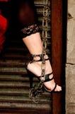 цепная нога Стоковые Фото