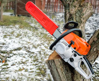 Цепная пила и отрезанные ветви дерева Стоковое Фото