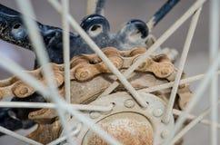 Цепное колесо и цепь Стоковые Изображения