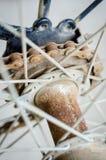 Цепное колесо и цепь Стоковое Изображение RF