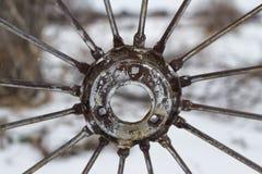 Цепное колесо колеса Стоковое Фото