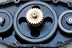 Цепное колесо Стоковые Изображения RF