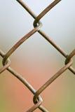 цепное соединение загородки Стоковые Фото
