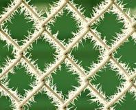 цепное соединение заморозка загородки Стоковая Фотография