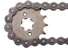 цепное цепное колесо Стоковое Изображение RF