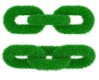 цепной зеленый цвет травы Стоковое Изображение RF