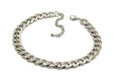 Цепной серебр ожерелья Стоковое Фото