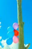 Цепь воздушного шара в небе Стоковые Изображения