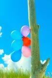 Цепь воздушного шара в небе Стоковая Фотография