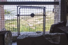 Цепь крепости с отверстием Стоковые Фотографии RF