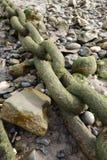 Цепь на пляже Стоковая Фотография