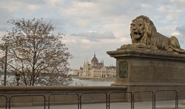 цепь budapest моста Стоковая Фотография