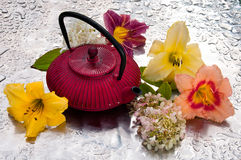 Церемония чая стоковое фото