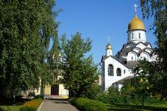 церковь Александра nevsky Стоковое Изображение RF