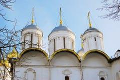 Церковь 12 апостолов в Москве Кремле Всемирное наследие ЮНЕСКО Стоковая Фотография RF