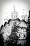 церковь 12 апостолов kremlin moscow Место всемирного наследия Unesco Стоковые Фотографии RF