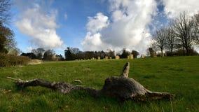 Церковь и поместье Ashby канонов Стоковое Изображение